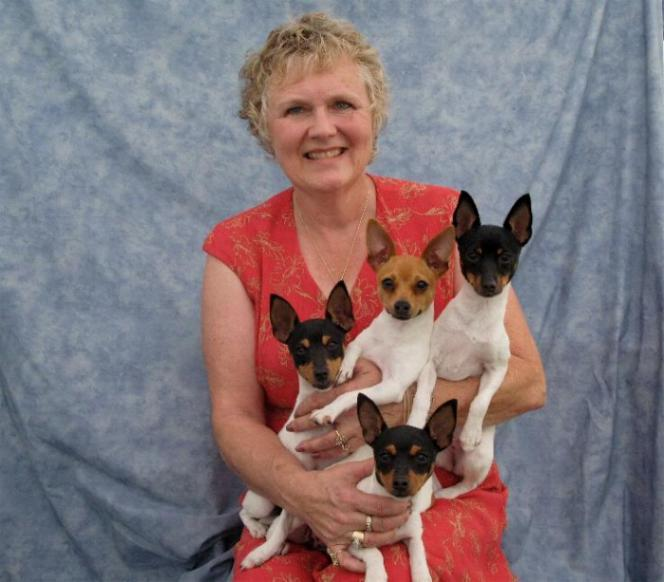 Margi Hill & Toy Fox Terriers